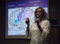 Neurotherapy Workshop 2014